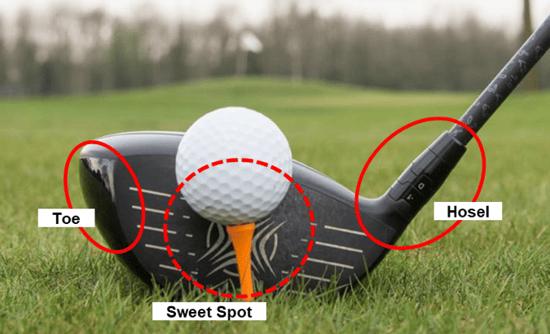 Golf Club Anatomy