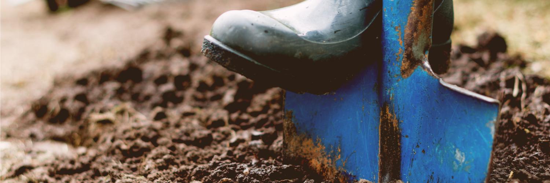 blog-shovel-5-why-1.png