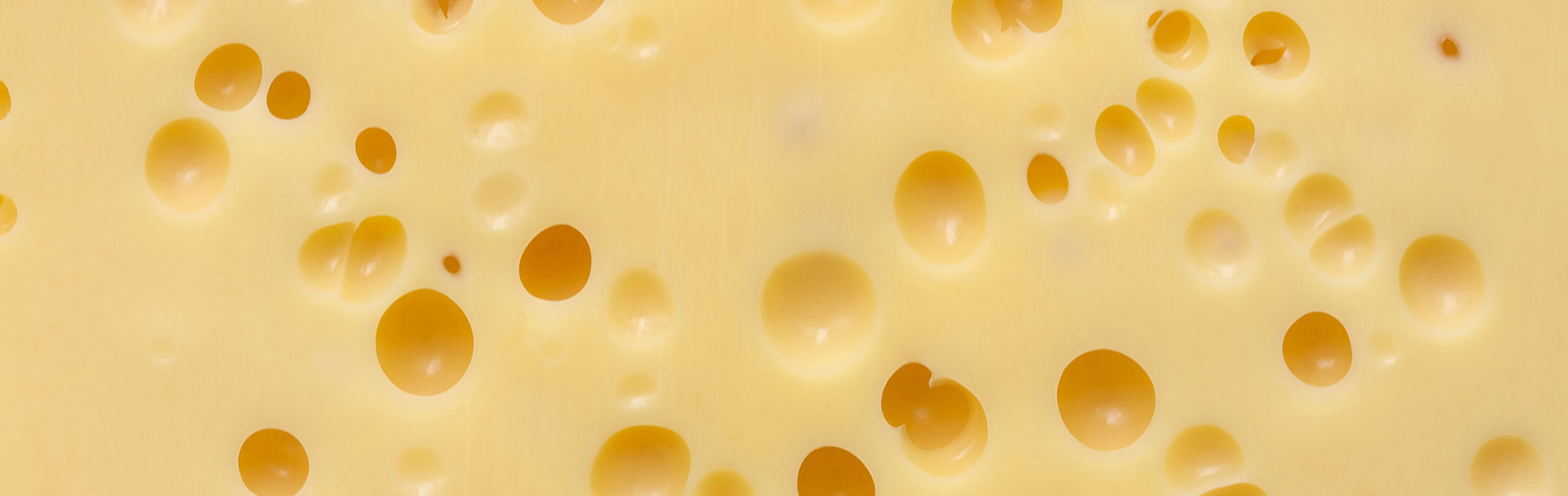swiss-cheese-model.jpg
